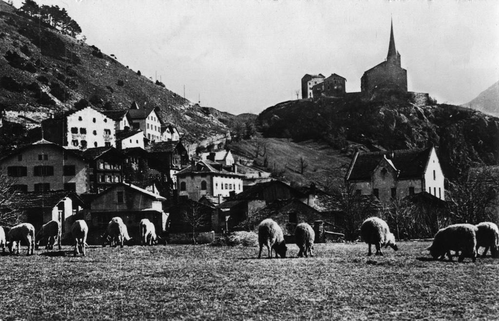 Village de Rarogne (Les éditions SEAL, Lausanne)